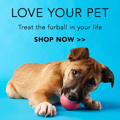 Love Your Pet at Evine