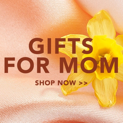 Gifts for Mom at Evine